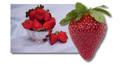 Italy: New Seizures Of Unlicenced Strawberries Imported To The EU