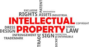 Intellectual2520Property