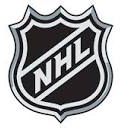 NHL.cc Owner Forgoes $6,000, Loses Domain To NHL